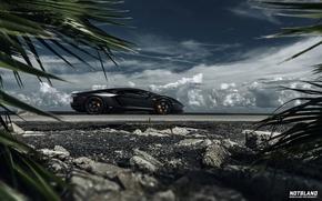 Картинка машина, авто, небо, листья, облака, Lamborghini, auto, Aventador, notbland, Webb Bland
