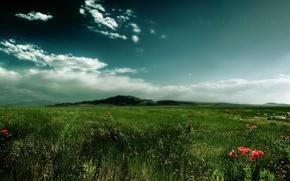Обои гора, Поле, трава, облака
