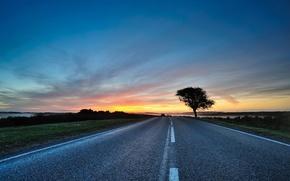 Обои путь, дорога, деревья, дерево, вечер, закаты, пути, небо, дороги