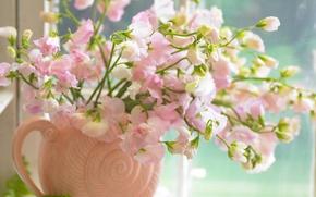 Картинка цветы, розовый, букет, окно, ваза