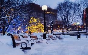 Картинка зима, свет, снег, деревья, город, огни, вечер, фонари, гирлянды, скамейки, праздники, лавочки, боке, лавки