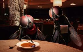 Обои юмор, человек, Ресторан, муха, суп