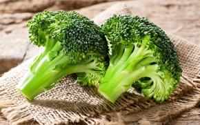 Обои брокколи, Broccoli, капуста, vegetable