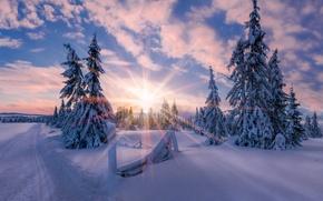 Картинка зима, солнце, свет, снег, звезда, утро, Норвегия