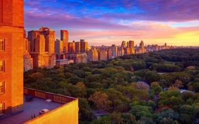 Картинка парк, нью-йорк, park, new-york, central park, центральный парк