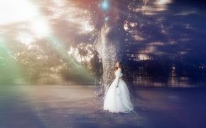 Картинка девушка, дерево, сказка, платье, ALICE IN WONDER LAND