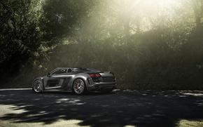 Картинка Audi, Carbon, Black, California, Supercar, Chrome, Wheels, Razor, eGarage, PPI, Adv1, Fiber