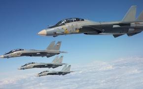 Картинка небо, истребители, Grumman, Tomcat, F-14, палубные