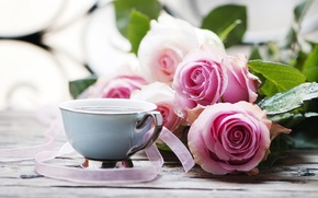 Картинка листья, стол, розы, чашка, напиток, розовые, ленточки, боке