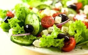 Обои сыр, лук, помидоры, огурцы, салат, маслины
