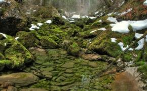 Картинка зелень, лес, вода, снег, река, камни, мох