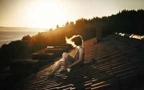 Картинка крыша, девушка, ветер, скат, Delirium
