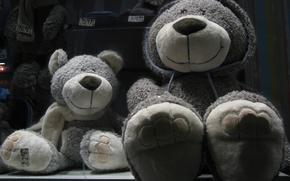 Картинка медвежонок, happy, плюшевый, мишки, bear, плюшевые медведи, плюшевые