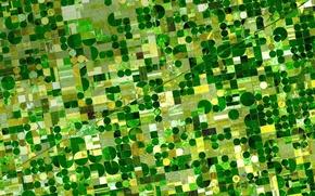 Картинка поля, США, штат Канзас, фото NASA