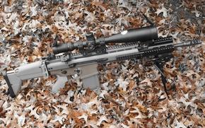 Картинка оружие, автомат, оптика, FN SCAR 17S