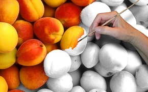 Обои рука, персики, кисть