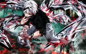 Картинка цепь, повязка, парень, токийский гуль, Tokyo Ghoul