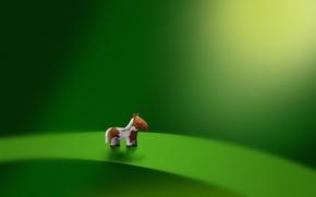 Обои лист, зеленый, лошадь, микро, пони