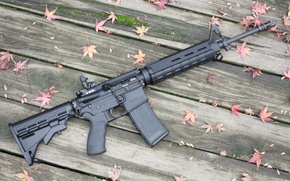 Картинка leaves, wood floor, Moss, AR-15 rifle assault