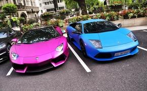Картинка красотки, суперкары, lamborghini murcielago lp640, малышки, Lamborghini Aventador LP700-4