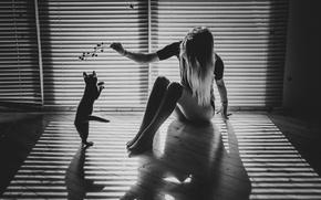 Картинка кошка, девушка, свет, веточка, комната, игра, тени, монохром