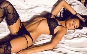 Обои девушка, кровать, playboy, girl, model, brunette, Audrey Nicole