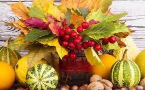 Картинка осень, листья, ягоды, урожай, тыква, орехи, autumn, leaves, nuts, still life, fruits, pumpkin, harvest