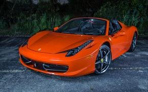 Картинка Оранжевая, Феррари, Ferrari, Orange, 458, Italia, Spider, Supercar