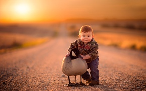 Картинка дорога, птица, мальчик, ребёнок, боке