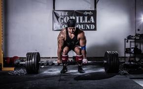 Картинка man, pose, tattoos, weightlifting