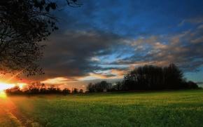 Обои восход, ночь, поле, лес