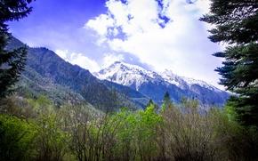 Картинка горы, кавказ, домбай, теберда