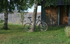 Картинка природа, велосипед, обои, прогулка, картинка