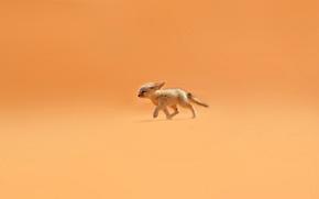 Обои песок, оранжевый, ветер, пустыня, лиса, уши, фенек