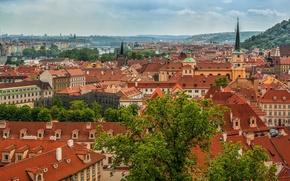 Картинка здания, крыши, Прага, Чехия, панорама, Prague, Czech Republic