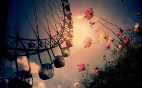 Обои город, цветы, карусель