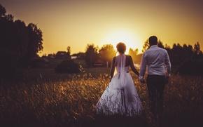 Картинка поле, закат, свадьба