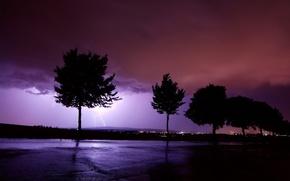 Обои молния, буря, Деревья