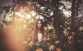 Картинка девушка, свет, цветы