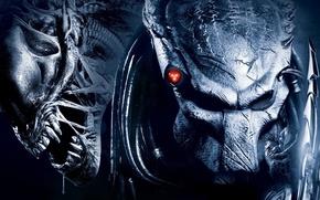 Обои хищник, Aliens vs Predator, чужой