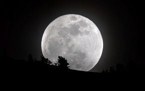 Картинка небо, луна, силуэт, контуры