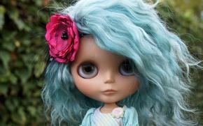 Картинка цветок, волосы, игрушка, кукла