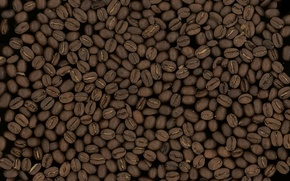 Обои макро, зерно, фон, зёрна, кофе, текстуры