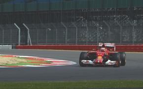 Картинка Formula 1, Jules Bianchi, Ferrari F14T