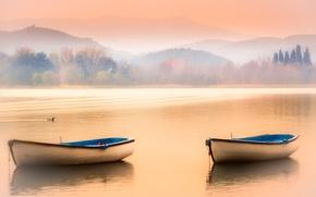 Картинка небо, горы, туман, озеро, лодки, утка