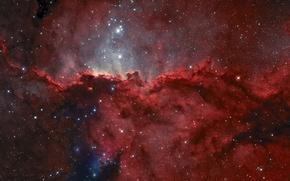 Обои Жертвенник, эмиссионная туманность, в созвездии, NGC 6188