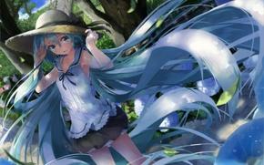 Обои девушка, волосы, шляпа, аниме, арт, vocaloid, hatsune miku, daidou, demitasse