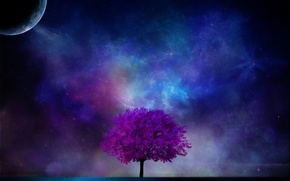 Картинка космос, ночь, дерево