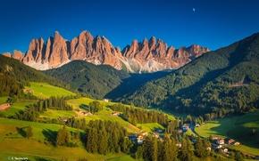 Картинка лес, деревья, пейзаж, горы, Альпы