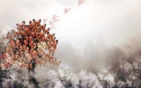 Картинка бабочки, фон, дерево